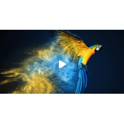 Kurs Adobe Photoshop CC -...
